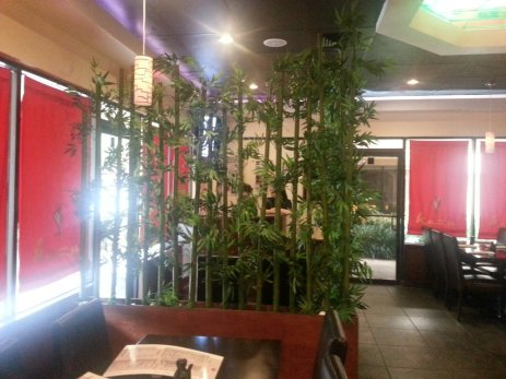 Kazu bamboo